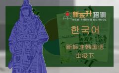 C14 新标准韩国语中级下册