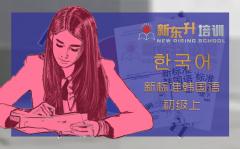 C11 新标准韩国语初级上册