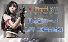 B13 日语能力N3考前冲刺