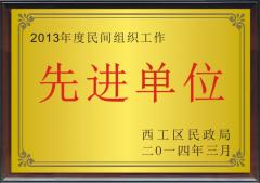 2013年度民间组织工作先进单位